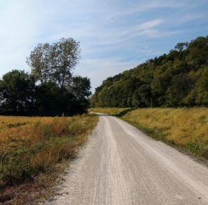 Katy Trail, fields