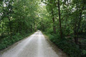Katy Trail, MKT Trail