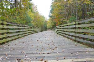 Virginia Capital Trail, wooden bridge