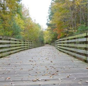 Virginia Capital Trail, wooden bridge