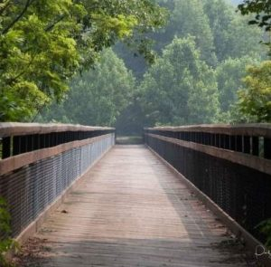 GAP bridge feature4